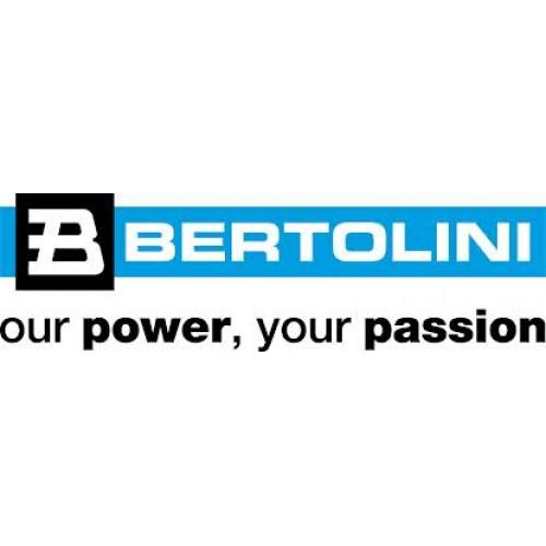 LOGO BERTOLINI